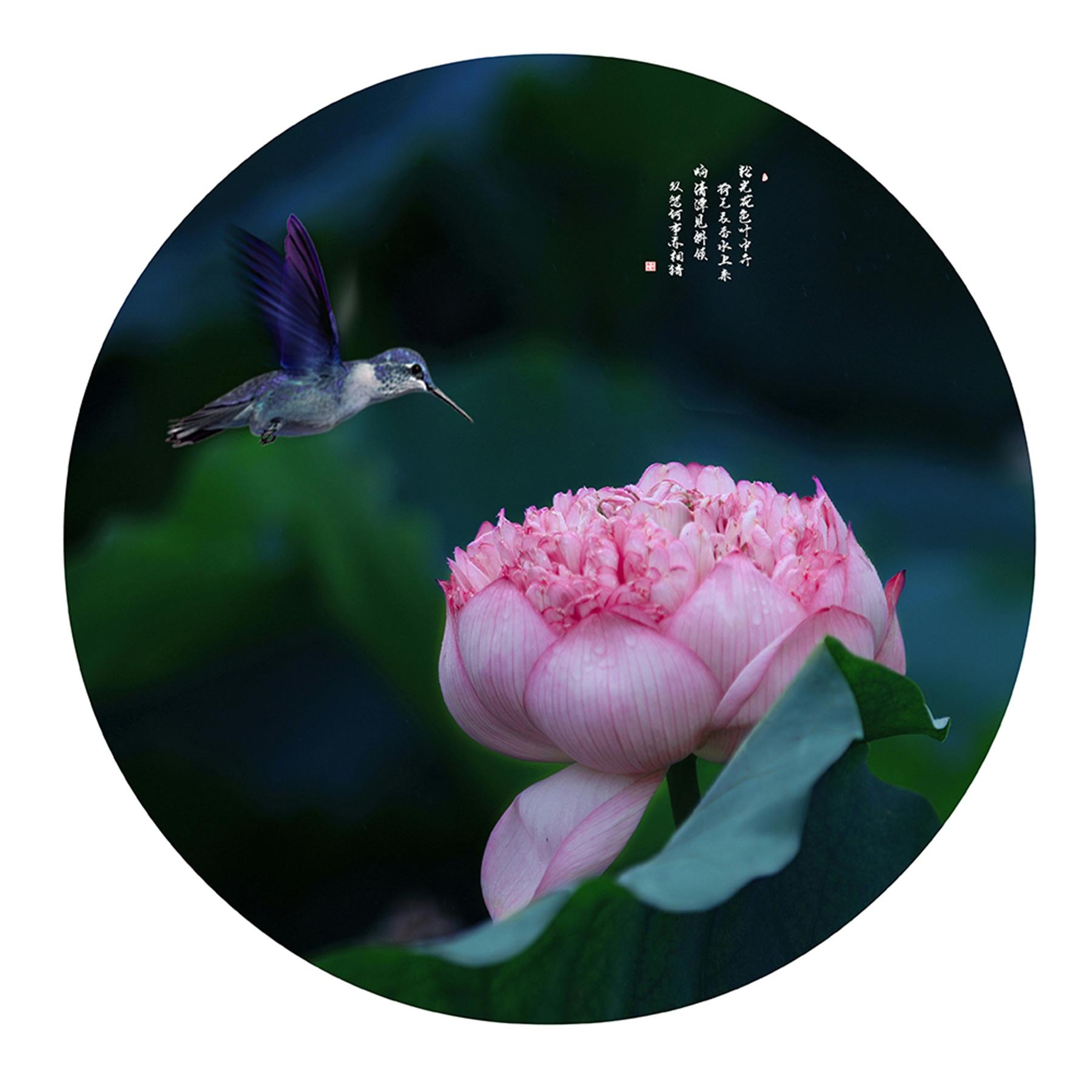 王京华15312308953(争奇斗艳).jpg