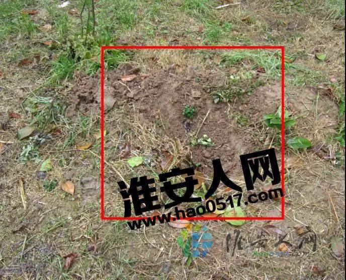 微信图片_20200123092604.jpg