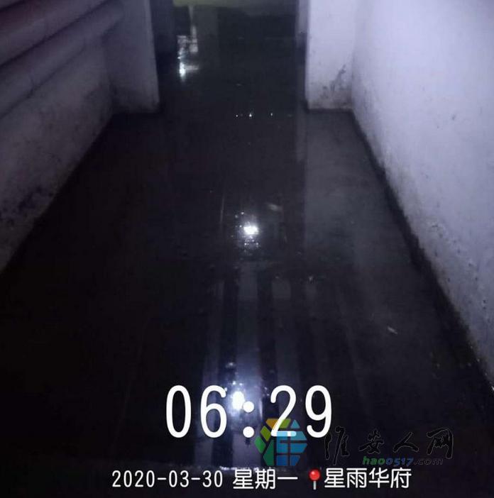 微信图片_20200403092456.png