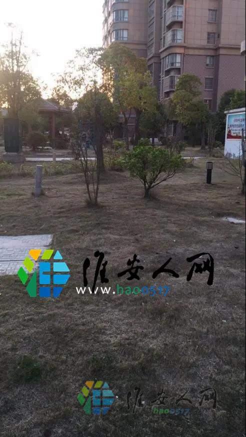 微信图片_20200414091654.jpg