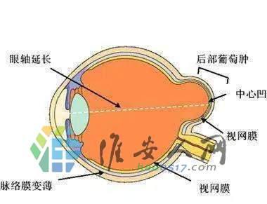 保护视力=保护我们的梦想8.jpg